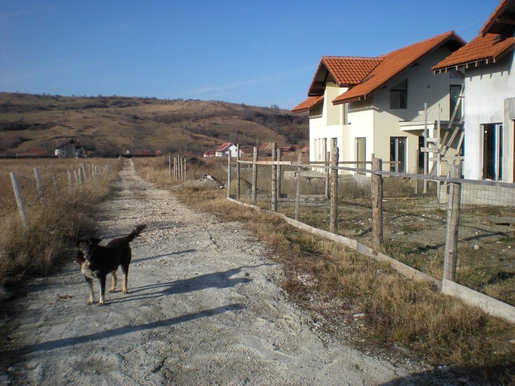 11 loturi de teren intravilan pentru constructiii de cate 520 mp, in Tohanul Nou, Brasov, fircare cu cota parte din drum