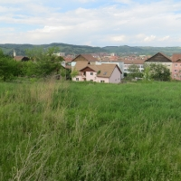 Teren, cartier Gloria și 2 case la roșu, str. Pacii, FN