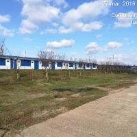 Zootechnical property - Pig farm - Pig Farm SRL