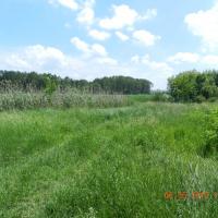 Teren intravilan în suprafață de 10692 mp, situat în Bârlad, jud. Vaslui