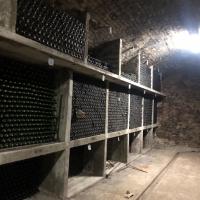 Stoc de vin de vinoteca produs de VERITAS PANCIU