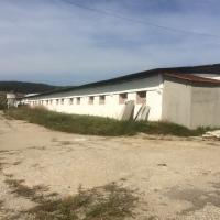 Hale depozitare ( fosta Ferma Săliște), com. Baciu, jud. Cluj