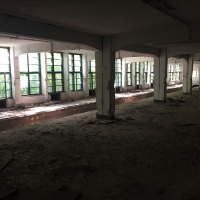 Teren liber 40.000 mp pretabil dezvoltare comerciala, rezidentiala, industriala sau mixta in  Arad, str Petru Rares
