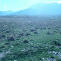 2 terenuri extravilane (faneata), 1.158 mp si 900 mp, Rasnov, la intrare in Tohanul Nou