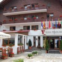 3 star Hotel-Restaurant RINA TIROL with 56 rooms in Poiana Brasov